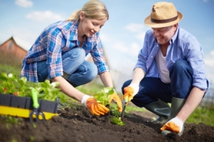 Wirtschafterpaar bei der Gartenarbeit